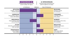 MBTI E-I Indicators